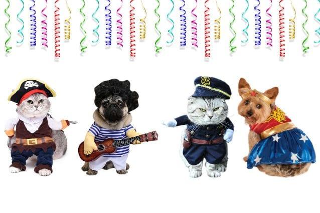 Costumi Di Carnevale Per Cani E Gatti I Più Divertenti Per Gli